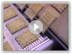 Shortbread Biscuit Depositing on an Empire Cookie Depositor